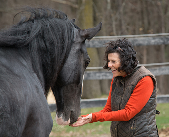 Lisa Daigle holding hands out under a black horse's nose.