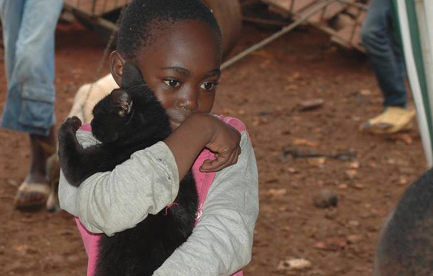 Child carrying cat
