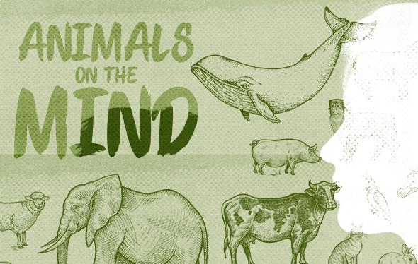 Animals on the Mind graphic