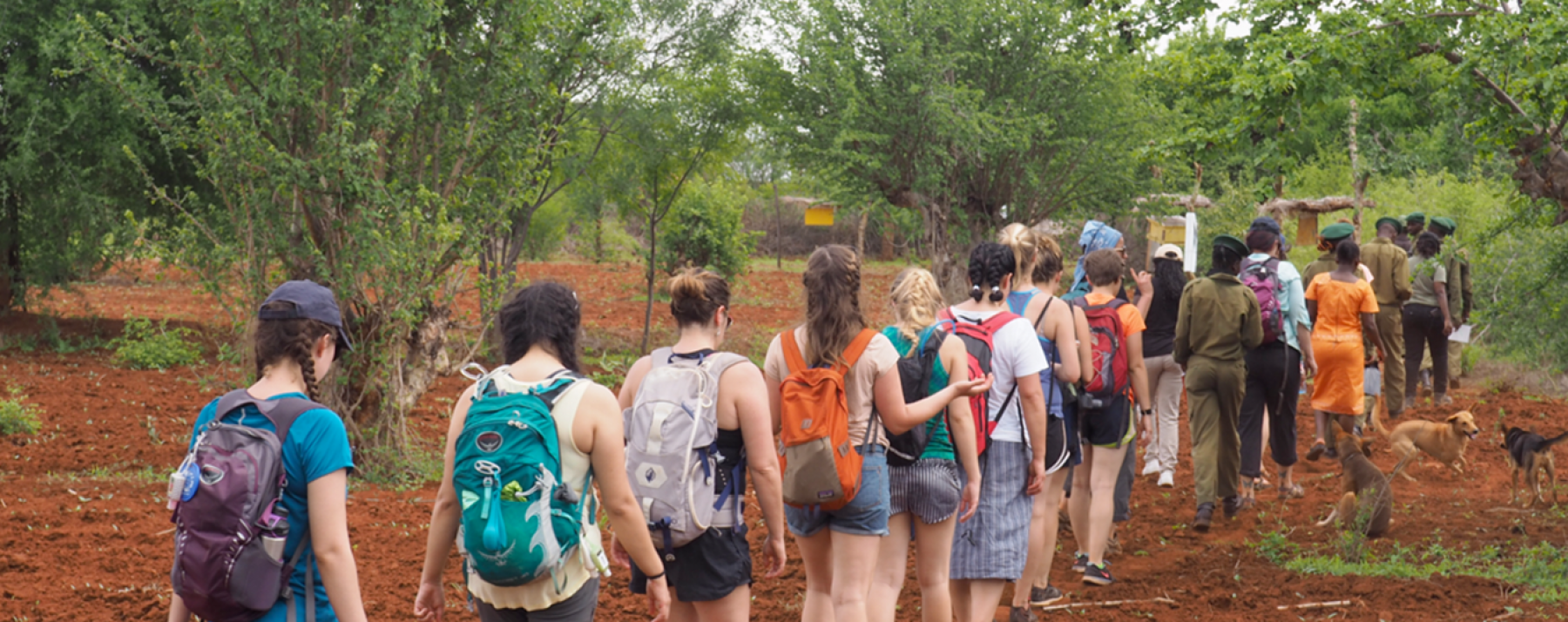 students walking in kenya